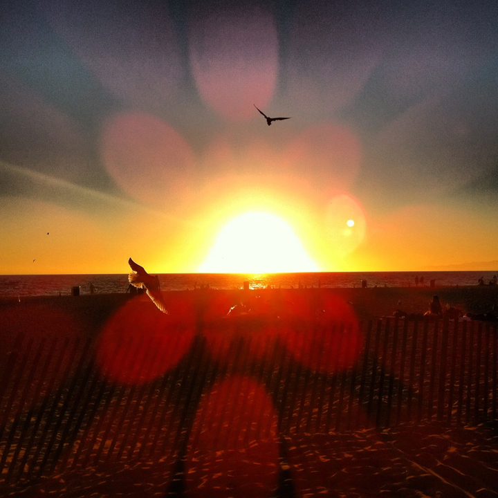 sunset beach single parent personals If you are a single mother or a mother who co-parents and are looking for love while trying to balance the responsibilities of being a parent, this article is for you.